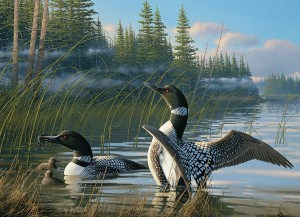 Cobble Hill: Common Loons (1000) legpuzzel