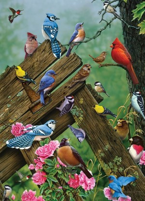 Cobble Hill: Birds of the Forest (1000) Verticale legpuzzel