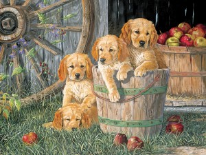 Cobble Hill: Puppy Pail (400) Familypuzzel
