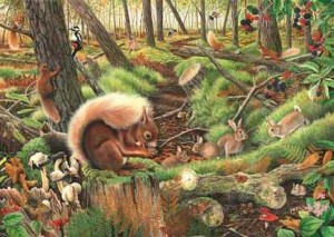 House of Puzzles: Save our Squirrels (1000) legpuzzel