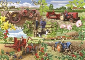 House of Puzzles: Farming Year (1000) legpuzzel