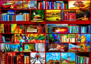 Bluebird: The Library The Travel Section (1000) puzzel
