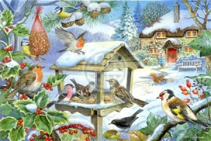 House of Puzzles: Feed the Birds (250XL) legpuzzel