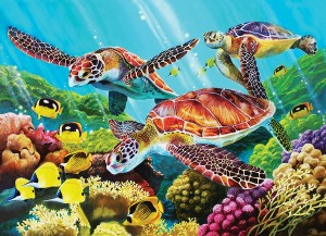 Cobble Hill: Molokini Current (350) Family puzzel