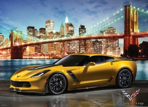 Eurographics: Corvette 2015 Z06 - Out for a Spin (1000) autopuzzel