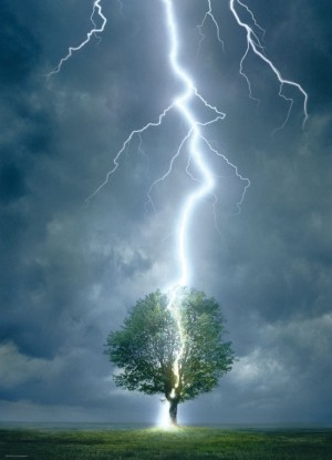 Eurographics: Lightning Striking Tree (1000) natuurpuzzel