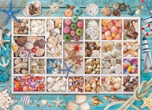 Eurographics: Seashell Collection (1000) strandpuzzel