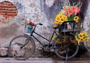 Educa: Bicycle with Flowers (500) legpuzzel