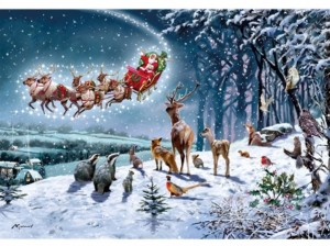 Otter House: Magical Christmas (500) kerstpuzzel