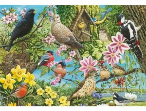 Otter House: Nature's Finest (500) vogelpuzzel
